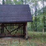 Paśnik w łowisku Nowa Wieś