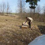 Andrzej zasila łowiska Bażantami w Gajewie
